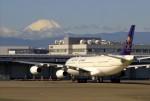 デデゴンさんが、羽田空港で撮影したサウジアラビア王国政府 A340-213Xの航空フォト(写真)