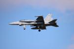 yasunori0624さんが、三沢飛行場で撮影したアメリカ海軍 F/A-18C Hornetの航空フォト(写真)