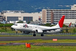 キットカットさんが、伊丹空港で撮影した日本航空 737-846の航空フォト(写真)