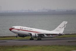 ax0110さんが、羽田空港で撮影したスペイン空軍 A310-304の航空フォト(写真)