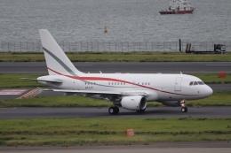 ax0110さんが、羽田空港で撮影したグローバル・ジェット・ルクセンブルク A318-112 CJ Eliteの航空フォト(写真)