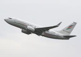 LOTUSさんが、関西国際空港で撮影したアラブ・ウイングス 737-7GJ BBJの航空フォト(写真)