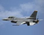 しんちゃん007さんが、浜松基地で撮影したアメリカ空軍 F-16 Fighting Falconの航空フォト(飛行機 写真・画像)