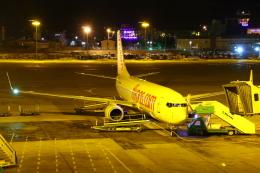 masa707さんが、エセンボーア国際空港で撮影したペガサス・エアラインズ 737-82Rの航空フォト(飛行機 写真・画像)
