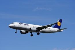 航空フォト:D-AIUL ルフトハンザドイツ航空 A320