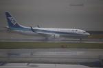 kwnbさんが、中部国際空港で撮影した全日空 737-881の航空フォト(写真)