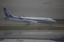 kwnbさんが、中部国際空港で撮影した全日空 737-881の航空フォト(飛行機 写真・画像)