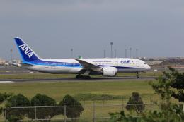 NH642さんが、台湾桃園国際空港で撮影した全日空 787-8 Dreamlinerの航空フォト(飛行機 写真・画像)