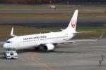 セブンさんが、新千歳空港で撮影した日本航空 737-846の航空フォト(飛行機 写真・画像)