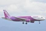 FLYING  HONU好きさんが、関西国際空港で撮影したピーチ A320-214の航空フォト(写真)