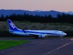Faridさんが、大館能代空港で撮影した全日空 737-881の航空フォト(写真)
