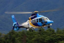 Assk5338さんが、松本空港で撮影した東邦航空 EC155Bの航空フォト(飛行機 写真・画像)