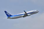 EC5Wさんが、伊丹空港で撮影した全日空 737-881の航空フォト(写真)