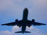 yutopさんが、米子空港で撮影した全日空 767-381/ERの航空フォト(写真)