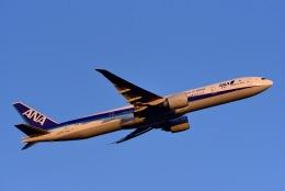 フランクフルト国際空港 - Frankfurt Airport [FRA/EDDF]で撮影された全日空 - All Nippon Airways [NH/ANA]の航空機写真