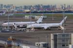 やつはしさんが、羽田空港で撮影したドイツ空軍 A340-313Xの航空フォト(写真)
