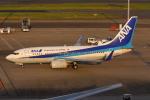 やつはしさんが、羽田空港で撮影した全日空 737-781の航空フォト(写真)