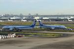 Noyu30さんが、羽田空港で撮影した全日空 787-9の航空フォト(写真)