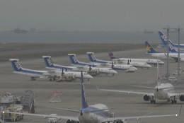 Mitsuki1211さんが、中部国際空港で撮影した全日空 DHC-8-400の航空フォト(飛行機 写真・画像)