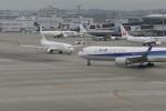 Mitsuki1211さんが、中部国際空港で撮影した全日空 767-381/ERの航空フォト(写真)