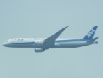 otromarkさんが、八尾空港で撮影した全日空 787-9の航空フォト(写真)
