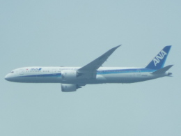 otromarkさんが、八尾空港で撮影した全日空 787-9の航空フォト(飛行機 写真・画像)