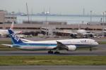 まーちらぴっどさんが、羽田空港で撮影した全日空 787-9の航空フォト(写真)