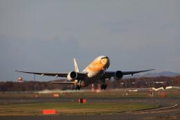 モモさんが、新千歳空港で撮影したノックスクート 777-212/ERの航空フォト(飛行機 写真・画像)
