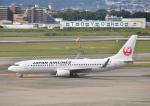 EC5Wさんが、伊丹空港で撮影した日本航空 737-846の航空フォト(写真)
