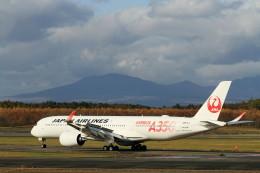 モモさんが、新千歳空港で撮影した日本航空 A350-941の航空フォト(飛行機 写真・画像)