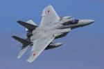 norimotoさんが、小松空港で撮影した航空自衛隊 F-15J Eagleの航空フォト(写真)