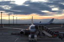 navipro787さんが、中部国際空港で撮影したスペイン空軍 A310-304の航空フォト(飛行機 写真・画像)