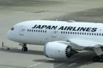 Yusuke✈︎さんが、羽田空港で撮影した日本航空 787-8 Dreamlinerの航空フォト(写真)