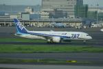 Yusuke✈︎さんが、羽田空港で撮影した全日空 787-8 Dreamlinerの航空フォト(写真)