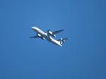 いぶちゃんさんが、シアトル タコマ国際空港で撮影したエラ・アラスカ DHC-8-401Q Dash 8の航空フォト(飛行機 写真・画像)