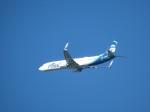 いぶちゃんさんが、シアトル タコマ国際空港で撮影したアラスカ航空 737-990/ERの航空フォト(飛行機 写真・画像)