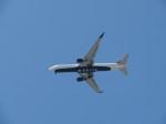 いぶちゃんさんが、シアトル タコマ国際空港で撮影したデルタ航空 767-332/ERの航空フォト(飛行機 写真・画像)