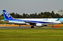 キットカットさんが、成田国際空港で撮影した全日空 A320-214の航空フォト(飛行機 写真・画像)