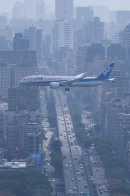 かずまっくすさんが、台北松山空港で撮影した全日空 787-8 Dreamlinerの航空フォト(飛行機 写真・画像)