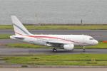 meron panさんが、羽田空港で撮影したグローバル・ジェット・ルクセンブルク A318-112 CJ Eliteの航空フォト(写真)