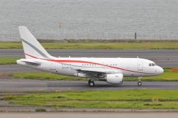 meron panさんが、羽田空港で撮影したグローバル・ジェット・ルクセンブルク A318-112 CJ Eliteの航空フォト(飛行機 写真・画像)