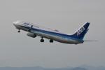 kuro2059さんが、静岡空港で撮影した全日空 737-8ALの航空フォト(写真)