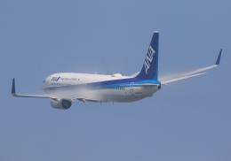 LOTUSさんが、伊丹空港で撮影した全日空 737-881の航空フォト(飛行機 写真・画像)