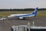 7915さんが、鳥取空港で撮影した全日空 737-781の航空フォト(写真)