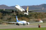 syo12さんが、函館空港で撮影したタイガーエア台湾 A320-232の航空フォト(写真)