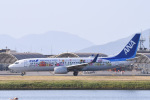 Jyunpei Ohyamaさんが、岩国空港で撮影した全日空 737-881の航空フォト(写真)