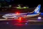 Cozy Gotoさんが、成田国際空港で撮影した全日空 737-781の航空フォト(写真)