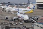flyflygoさんが、成田国際空港で撮影した日本貨物航空 747-8KZF/SCDの航空フォト(写真)