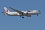 qooさんが、成田国際空港で撮影した日本航空 787-8 Dreamlinerの航空フォト(飛行機 写真・画像)