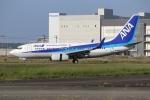 ぽんさんが、徳島空港で撮影した全日空 737-781の航空フォト(写真)